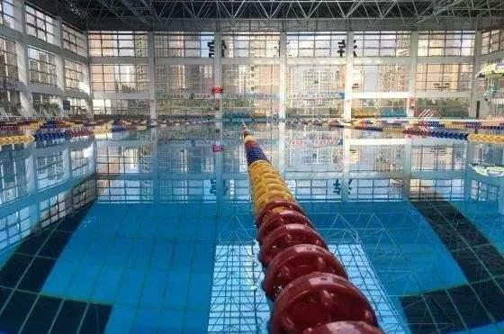 游泳管伟德国际1946网址案例